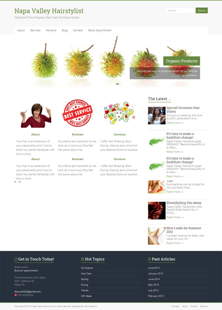 Diana Lyons, Napa Valley Hairstylist website by SLA Systems